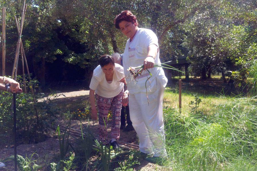 """""""L'orto dei nonni"""" fiorisce alla Rsa del Pionta"""